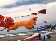 Rockaway kite festival 2013