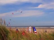 Washington State International Kite Festival 2013